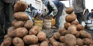 Keniaanse aardappelverkopers