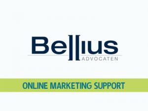Bellius WordPress Support